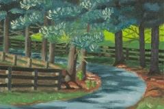 The Road to Tannen Farm